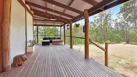 Rural / Farming commercial property for sale at 2410 Wollombi Rd Wollombi NSW 2325