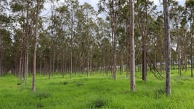 Rural / Farming commercial property sold at Lot 27 & 28 West Wooroolin Road Wooroolin QLD 4608