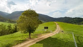 Rural / Farming commercial property for sale at Strike A Light 1579 Cells Road Cells River NSW 2424
