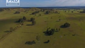 Rural / Farming commercial property for sale at 95&96 Ainsworth Road Leeville NSW 2470