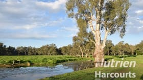 Rural / Farming commercial property for sale at Lot 3/Lot 3 113 Wilson Road Wangaratta VIC 3677