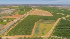 Rural / Farming commercial property for sale at Lot/939 Mourquong Road Mourquong NSW 2739