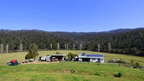 Rural / Farming commercial property for sale at 1746 The Snake Trk Towamba NSW 2550