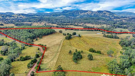 Rural / Farming commercial property for sale at 202 Cullinane Road Mothar Mountain QLD 4570