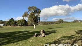 Rural / Farming commercial property for sale at Lot 21 Foote Road Mount Torrens SA 5244