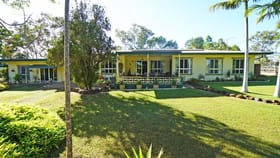 Rural / Farming commercial property for sale at 446 Emerald End Road Mareeba QLD 4880