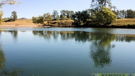 Rural / Farming commercial property for sale at 85 Wards Rd Aldavilla NSW 2440