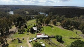 Rural / Farming commercial property for sale at 204 Lens Rd Toorloo Arm VIC 3909