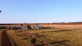 Rural / Farming commercial property for sale at 140 Strongs Road Kingaroy QLD 4610