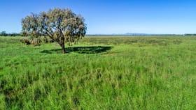 Rural / Farming commercial property for sale at 1048 Box Ridge Road Gulargambone NSW 2828