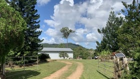 Rural / Farming commercial property for sale at 173 Kinjun Road Dingo Pocket QLD 4854