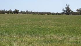 Rural / Farming commercial property for sale at Gathen Road Deniliquin NSW 2710