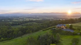 Rural / Farming commercial property for sale at 60 Talga Road Lovedale NSW 2325