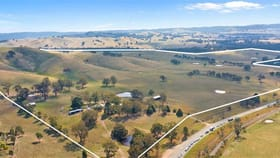 Rural / Farming commercial property for sale at 7909 Maroondah Highway Merton VIC 3715
