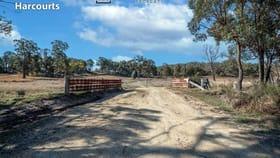 Rural / Farming commercial property for sale at EagleMount/668 Ten Mile Road Deepwater NSW 2371