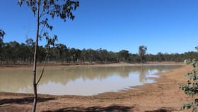 Rural / Farming commercial property for sale at 'Thomson' Mundubbera-Durong Road Boondooma QLD 4613
