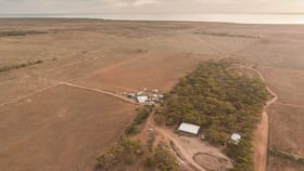 Rural / Farming commercial property for sale at 57 Buggy Road Baroota SA 5495