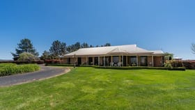 Rural / Farming commercial property for sale at 232 Thomas Drive Eglinton NSW 2795