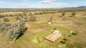 Rural / Farming commercial property for sale at Green Acres' Barryrennie Road Cowra NSW 2794