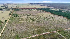 Rural / Farming commercial property for sale at Carrs Creek road Longford VIC 3851