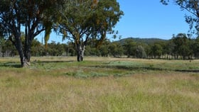 Rural / Farming commercial property for sale at 0 Cunningham Highway Oman Ama QLD 4352