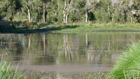 Rural / Farming commercial property for sale at 400 Phillips Swamp Road Busbys Flat NSW 2469