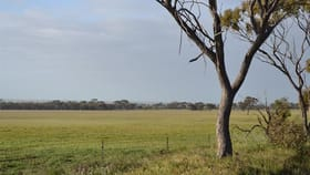 Rural / Farming commercial property for sale at . Woolundra Kellerberrin WA 6410