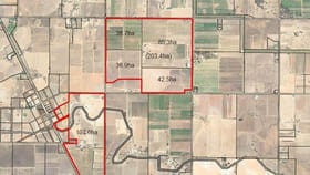 Rural / Farming commercial property for sale at Cobram VIC 3644