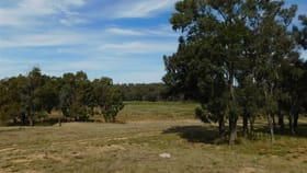 Rural / Farming commercial property for sale at 122 Dows Lane Coonabarabran NSW 2357