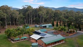 Rural / Farming commercial property for sale at 245 Sandy Creek Road Mount Vincent NSW 2323