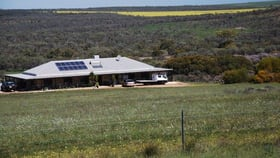 Rural / Farming commercial property for sale at 3554 Geraldton-Mount Magnet Road Wicherina WA 6532