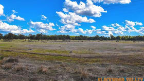Rural / Farming commercial property for sale at 94 Wilgarrup Road Yornup WA 6256