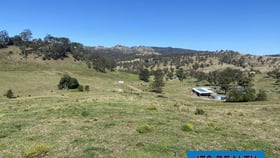 Rural / Farming commercial property for sale at 1021 Muscle Creek Road Muscle Creek NSW 2333