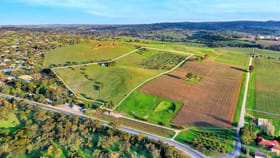 Rural / Farming commercial property for sale at Lot 404 Richard Street Penrice SA 5353