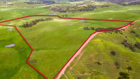 Rural / Farming commercial property for sale at Lots 296/142 KEMMISS HILL ROAD Inman Valley SA 5211