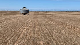 Rural / Farming commercial property for sale at Sec 65 & 66 Mallala/ Long Plains Roads Dublin SA 5501