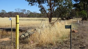 Rural / Farming commercial property for sale at 13692 Great Southern Highway West Pingelly WA 6308
