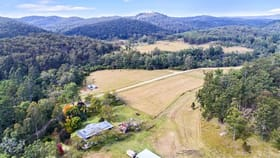 Rural / Farming commercial property for sale at 1199 Putty Valley Road Putty NSW 2330