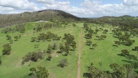 Rural / Farming commercial property for sale at 16 Paperbark The Caves QLD 4702