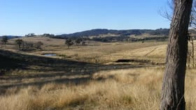 Rural / Farming commercial property for sale at Fletchers'/. Mt Mitchell Raod Glencoe NSW 2365