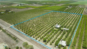 Rural / Farming commercial property for sale at 63 Mango Avenue Horseshoe Lagoon QLD 4809