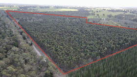 Rural / Farming commercial property for sale at Lot 81 Old Comaum Road Coonawarra SA 5263