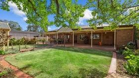Rural / Farming commercial property for sale at 2902 Thiele Highway Kapunda SA 5373