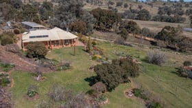 Rural / Farming commercial property for sale at 81 Bonnie Springs Road Jindera NSW 2642