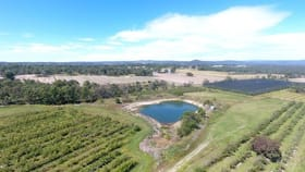 Rural / Farming commercial property for sale at 117 Rogers rd Stanthorpe QLD 4380