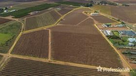 Rural / Farming commercial property for sale at Lot 2, 107 Azolia  Street Red Cliffs VIC 3496
