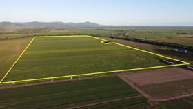 Rural / Farming commercial property for sale at 12-14 Shute Harbour Road Proserpine QLD 4800