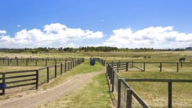 Rural / Farming commercial property for sale at 93 Nile Road Evandale TAS 7212