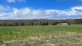 Rural / Farming commercial property for sale at 873 Thorndale Road Glen Aplin QLD 4381