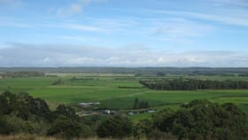 Rural / Farming commercial property for sale at 1432 Trowutta Road Edith Creek TAS 7330